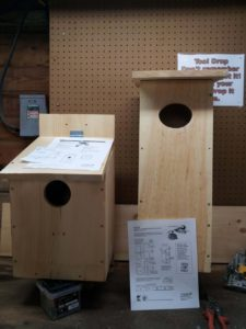 Bird Nest Box Building